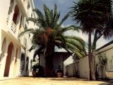 ZÚ Alžír, Alžírsko